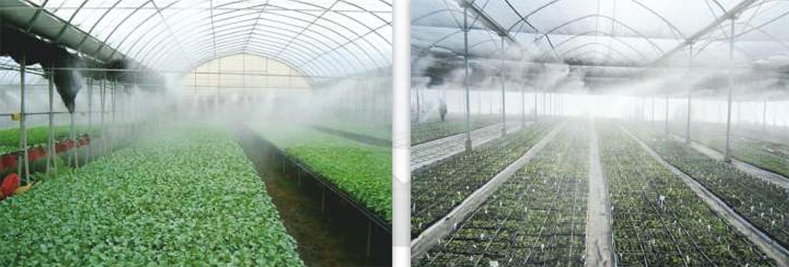 Орошение туманом теплиц